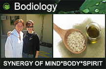 link_Bodiology